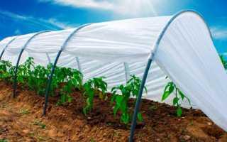 Агроволокно – как определиться, какое лучше купить : описание и особености, фото