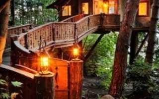 Дачи из дерева: примеры сооружений