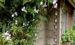 Дождевые цепи – необычный садовый декор