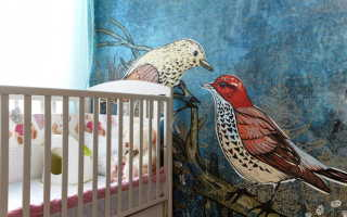 Где в квартире применяются обои с райскими птицами: какой интерьер подходит для отделки стен с птицами, какие цвета выбрать