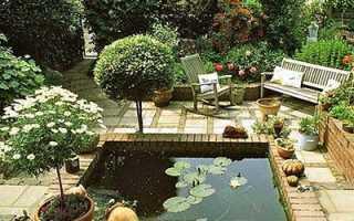 Водоем на участке: бассейн водоема, декорирование, растения и рыбы