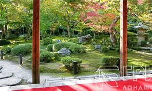 Замечательный парковый дизайн в японском стиле