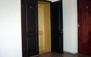 Двойные металлические входные двери – потребность, особенности, советы